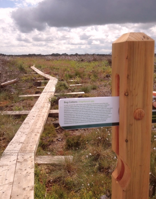 Coillte's new section of boardwalk, part of an EU LIFE project